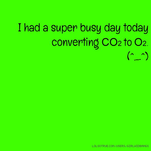 I had a super busy day today converting CO2 to O2. (^_^)