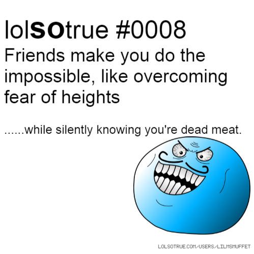 lolsotrue #0008 Friends make you do the impossible, like overcoming fear of heights ......while silently knowing you're dead meat.