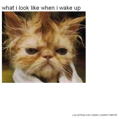 what i look like when i wake up​