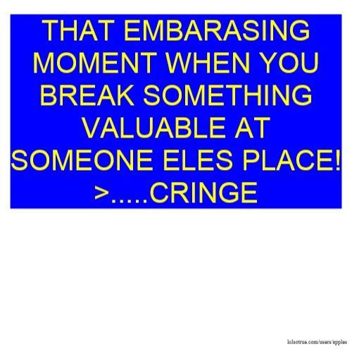 THAT EMBARASING MOMENT WHEN YOU BREAK SOMETHING VALUABLE AT SOMEONE ELES PLACE!>.....CRINGE