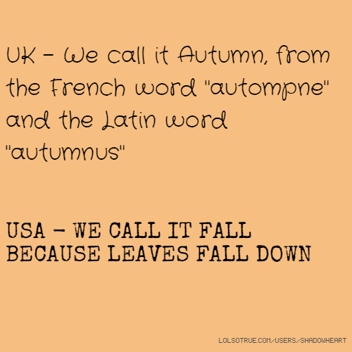 "UK - We call it Autumn, from the French word ""autompne"" and the Latin word ""autumnus"" USA - WE CALL IT FALL BECAUSE LEAVES FALL DOWN"