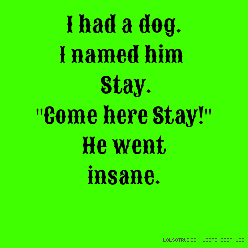 """I had a dog. I named him Stay. """"Come here Stay!"""" He went insane."""