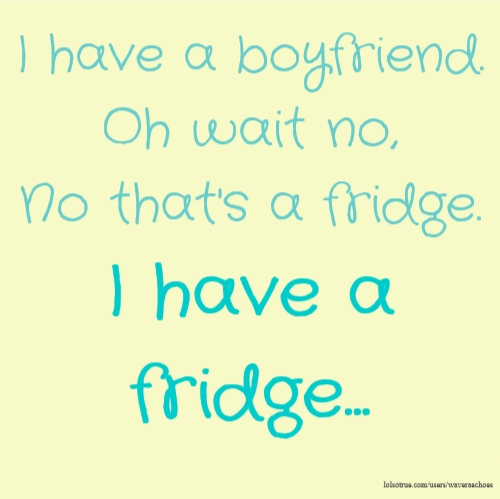 I have a boyfriend. Oh wait no, No that's a fridge. I have a fridge...