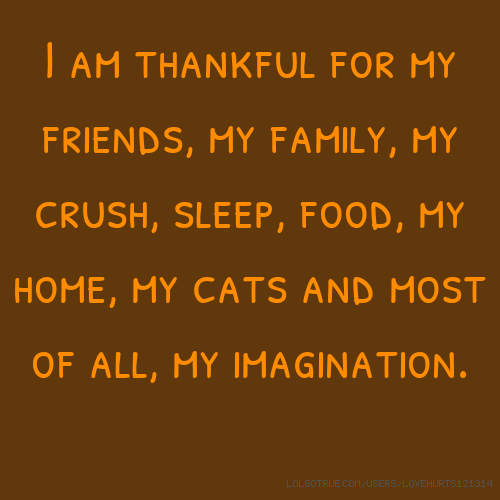I am thankful for my friends, my family, my crush, sleep, food, my home, my cats and most of all, my imagination.