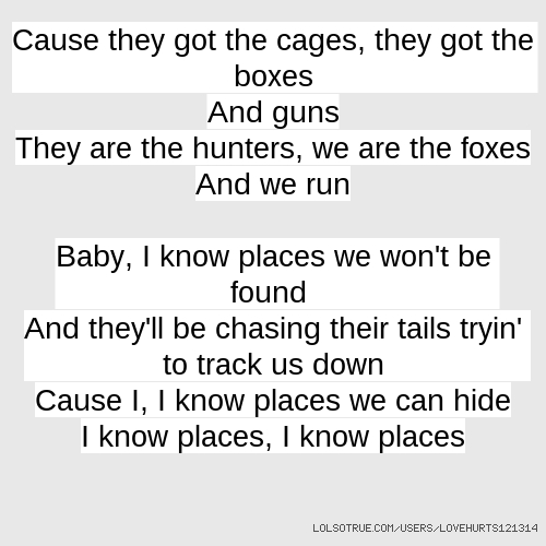 Cause they got the cages, they got the boxes And guns They are the hunters, we are the foxes And we run Baby, I know places we won't be found And they'll be chasing their tails tryin' to track us down Cause I, I know places we can hide I know places, I know places