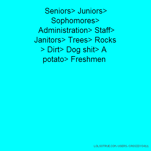 Seniors> Juniors> Sophomores> Administration> Staff> Janitors> Trees> Rocks > Dirt> Dog shit> A potato> Freshmen