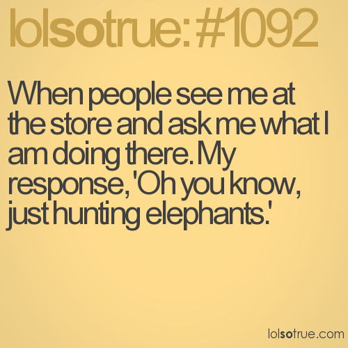 When people see me at the store and ask me what I am doing there. My response, 'Oh you know, just hunting elephants.'