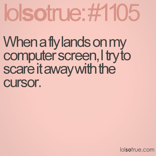 When a fly lands on my computer screen, I try to scare it away with the cursor.