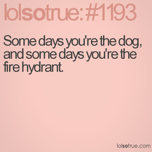 Some days you're the dog, and some days you're the fire hydrant.