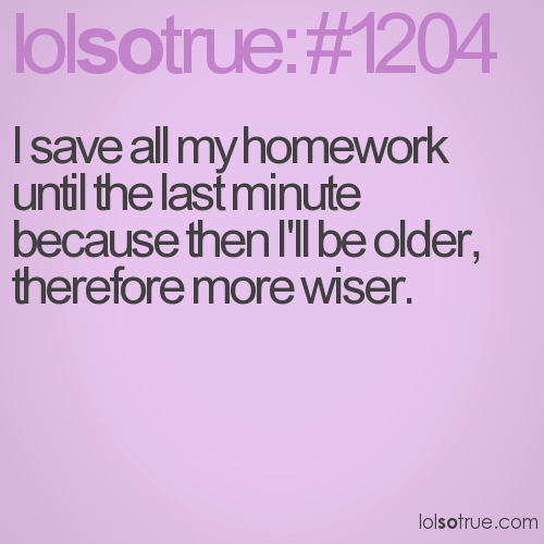 funny quotes on homework