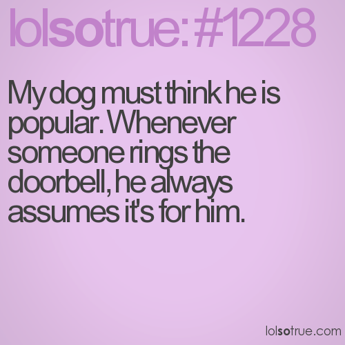 My dog must think he is popular. Whenever someone rings the doorbell, he always assumes it's for him.