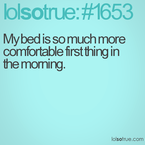 My bed is so much more comfortable first thing in the morning.
