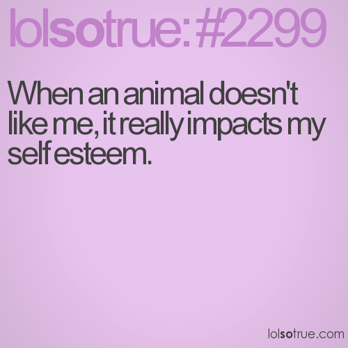 When an animal doesn't like me, it really impacts my self esteem.