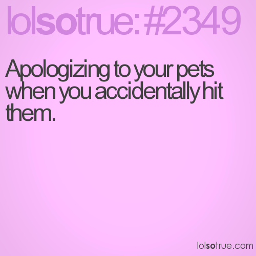 Apologizing to your pets when you accidentally hit them.