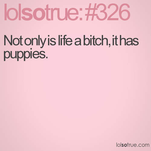 Not only is life a bitch, it has puppies.