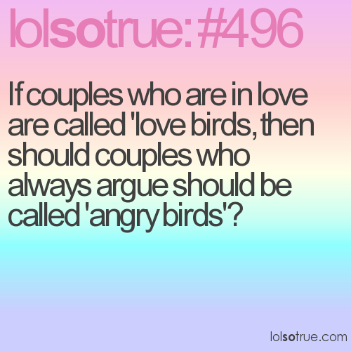 If couples who are in love are called 'love birds, then should couples who always argue should be called 'angry birds'?