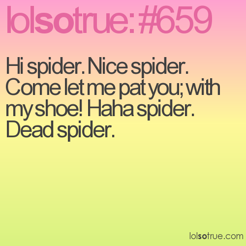 Hi spider. Nice spider. Come let me pat you; with my shoe! Haha spider. Dead spider.