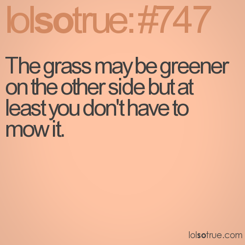 The grass may be greener on the other side but at least you don't have to mow it.